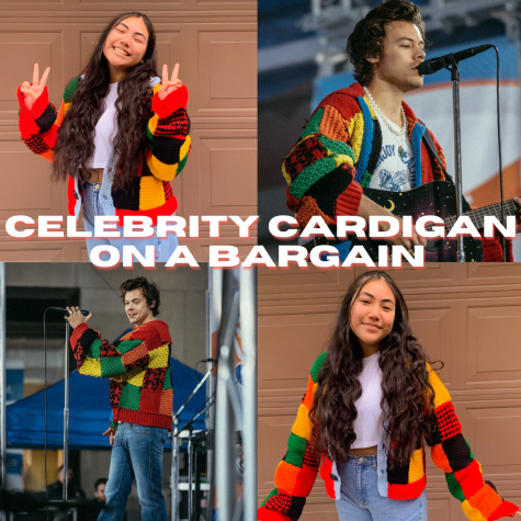 Celebrity Cardigan on a Bargain