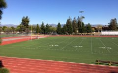 New Field, New Beginnings