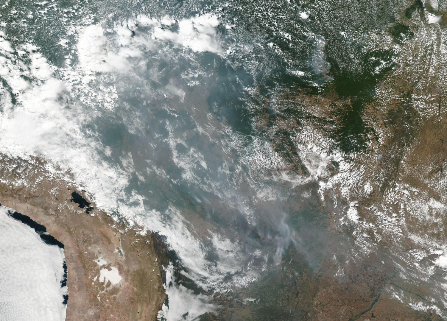 From Wikimedia commons, the smoke from wildfires burning in the Amazon basin on August 20, 2019, taken by the Suomi NPP using the VIIRS (Visible Infrared Imaging Radiometer Suite)